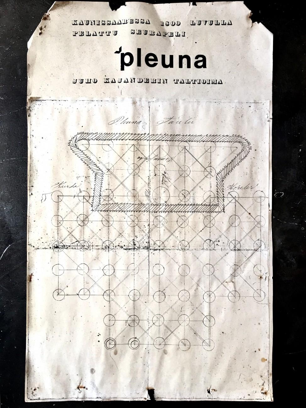 Pleuna_netti